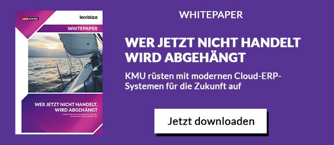 Whitepaper: Alle Vorteile von ERP für KMU